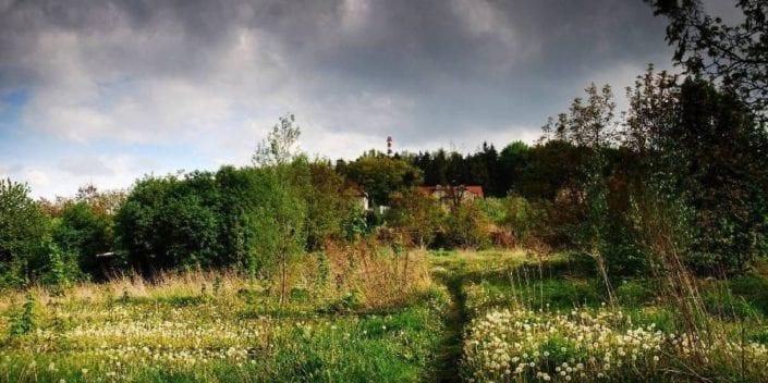 Strnadovo zahradnictví – znovu a lépe